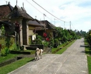 Penglipuran Traditional Village